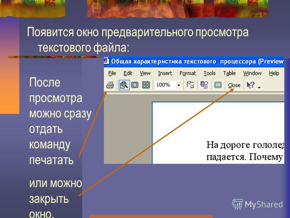 Появится окно предварительного просмотра текстового файла: После просмотра можно сразу отдать команду печатать или можно закрыть окно.