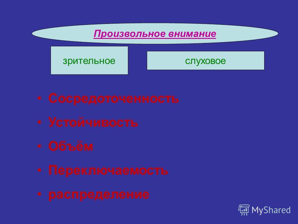Произвольное внимание Сосредоточенность Устойчивость Объём Переключаемость распределение зрительное слуховое