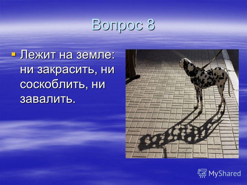 Вопрос 8 Лежит на земле: ни закрасить, ни соскоблить, ни завалить. Лежит на земле: ни закрасить, ни соскоблить, ни завалить.