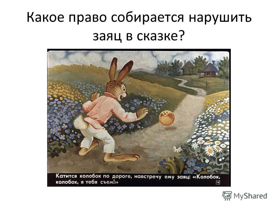 Какое право собирается нарушить заяц в сказке?