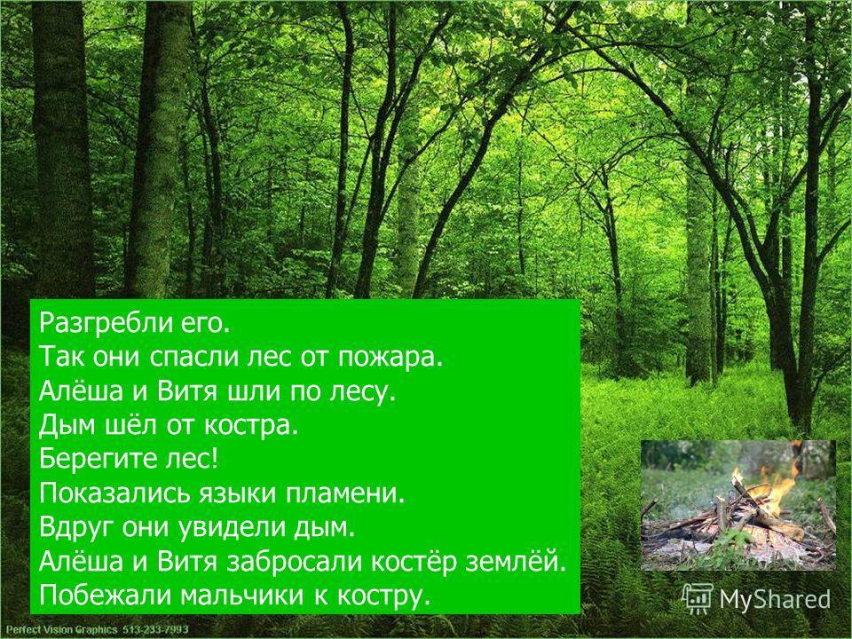Разгребли его. Так они спасли лес от пожара. Алёша и Витя шли по лесу. Дым шёл от костра. Берегите лес! Показались языки пламени. Вдруг они увидели дым. Алёша и Витя забросали костёр землёй. Побежали мальчики к костру.