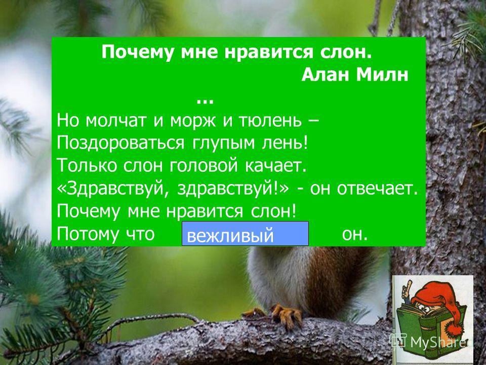 Почему мне нравится слон. Алан Милн … Но молчат и морж и тюлень – Поздороваться глупым лень! Только слон головой качает. «Здравствуй, здравствуй!» - он отвечает. Почему мне нравится слон! Потому что … он. вежливый