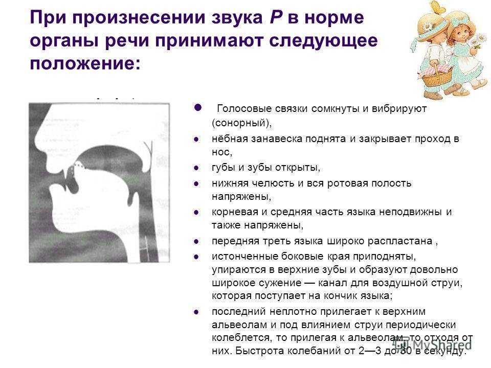 При произнесении звука Р в норме органы речи принимают следующее положение: Голосовые связки сомкнуты и вибрируют (сонорный), нёбная занавеска поднята и закрывает проход в нос, губы и зубы открыты, нижняя челюсть и вся ротовая полость напряжены, корн