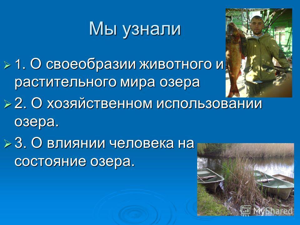 Мы узнали 1. О своеобразии животного и растительного мира озера 1. О своеобразии животного и растительного мира озера 2. О хозяйственном использовании озера. 2. О хозяйственном использовании озера. 3. О влиянии человека на состояние озера. 3. О влиян