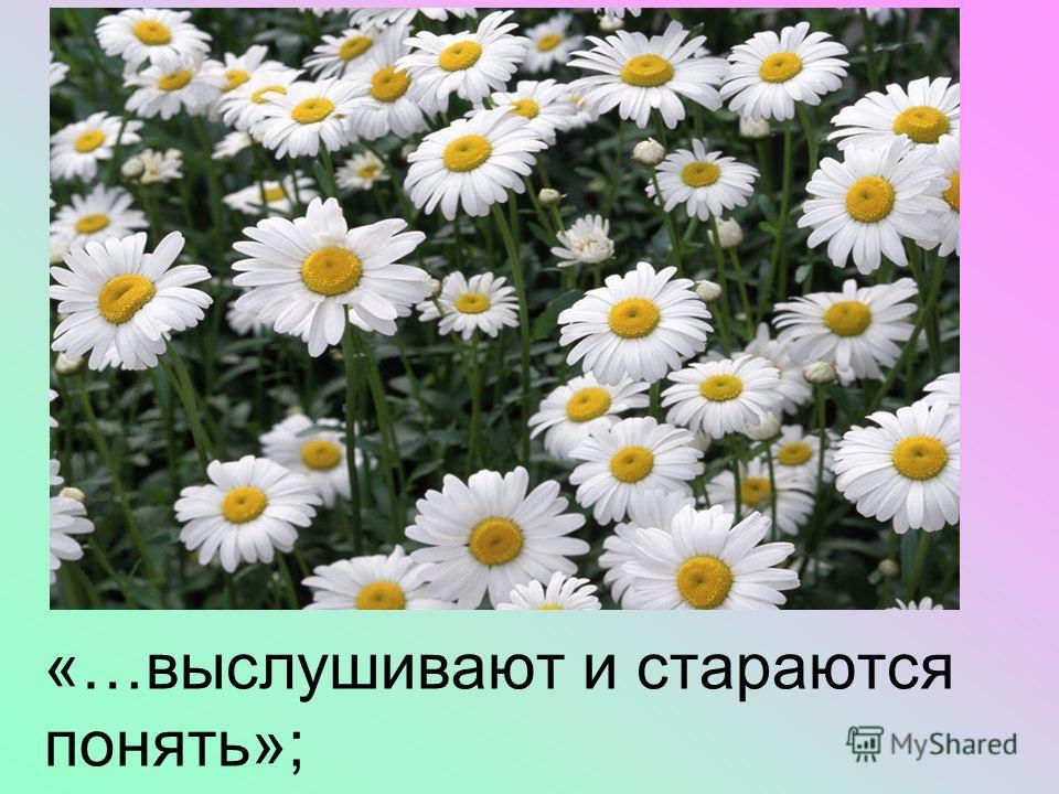 «…выслушивают и стараются понять»;