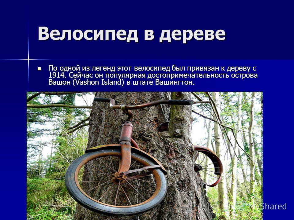 Велосипед в дереве По одной из легенд этот велосипед был привязан к дереву с 1914. Сейчас он популярная достопримечательность острова Вашон (Vashon Island) в штате Вашингтон. По одной из легенд этот велосипед был привязан к дереву с 1914. Сейчас он п