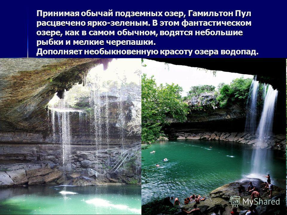 Принимая обычай подземных озер, Гамильтон Пул расцвечено ярко-зеленым. В этом фантастическом озере, как в самом обычном, водятся небольшие рыбки и мелкие черепашки. Дополняет необыкновенную красоту озера водопад.