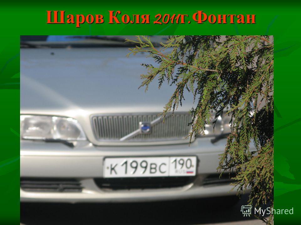 Шаров Коля 2011 г. Фонтан