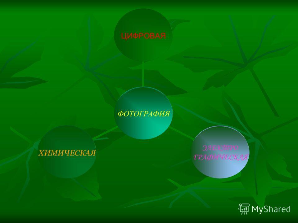 ФОТОГРАФИЯ ЦИФРОВАЯ ЭЛЕКТРО ГРАФИЧЕСКАЯ ХИМИЧЕСКАЯ