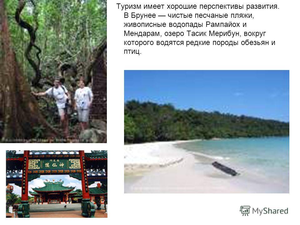 Туризм имеет хорошие перспективы развития. В Брунее чистые песчаные пляжи, живописные водопады Рампайох и Мендарам, озеро Тасик Мерибун, вокруг которого водятся редкие породы обезьян и птиц.