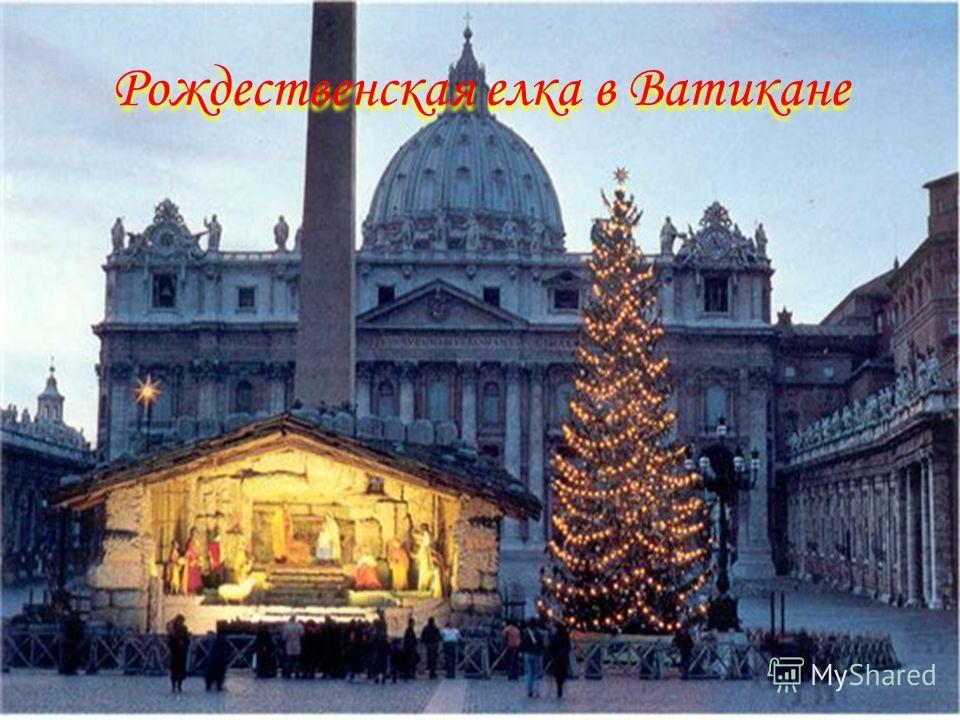 Рождественская елка в Ватикане Рождественская елка в Ватикане
