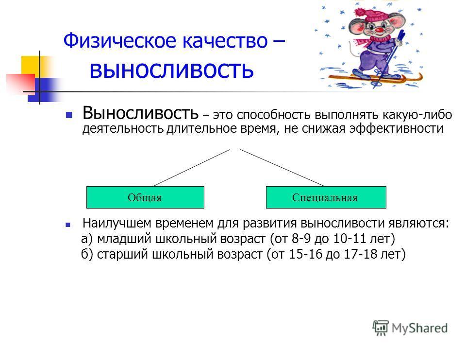 Физическое качество – выносливость Выносливость – это способность выполнять какую-либо деятельность длительное время, не снижая эффективности Наилучшем временем для развития выносливости являются: а) младший школьный возраст (от 8-9 до 10-11 лет) б)