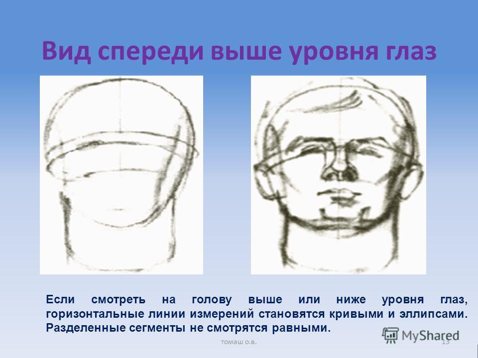 Вид спереди выше уровня глаз Если смотреть на голову выше или ниже уровня глаз, горизонтальные линии измерений становятся кривыми и эллипсами. Разделенные сегменты не смотрятся равными. 13томаш о.в.