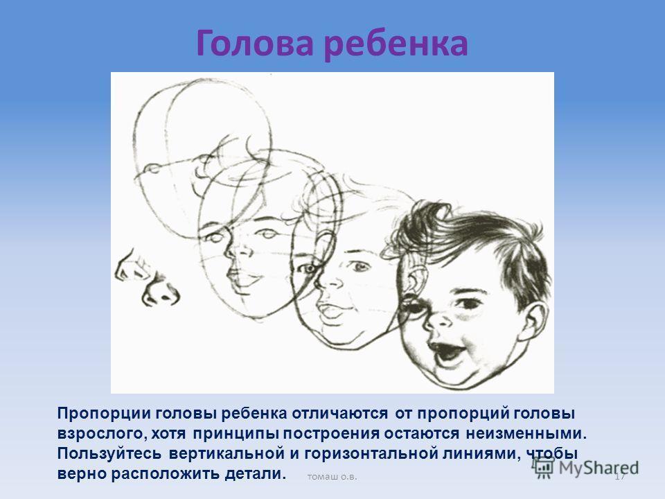 Голова ребенка Пропорции головы ребенка отличаются от пропорций головы взрослого, хотя принципы построения остаются неизменными. Пользуйтесь вертикальной и горизонтальной линиями, чтобы верно расположить детали. 17томаш о.в.