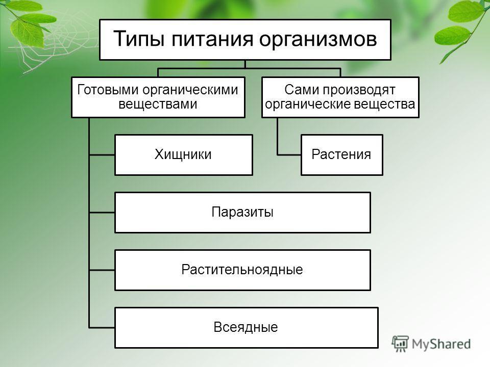 Типы питания организмов Готовыми органическими веществами Хищники Паразиты Растительноядные Всеядные Сами производят органические вещества Растения