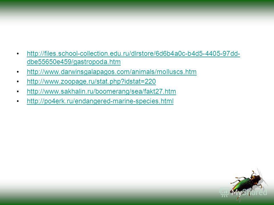 http://files.school-collection.edu.ru/dlrstore/6d6b4a0c-b4d5-4405-97dd- dbe55650e459/gastropoda.htmhttp://files.school-collection.edu.ru/dlrstore/6d6b4a0c-b4d5-4405-97dd- dbe55650e459/gastropoda.htm http://www.darwinsgalapagos.com/animals/molluscs.ht