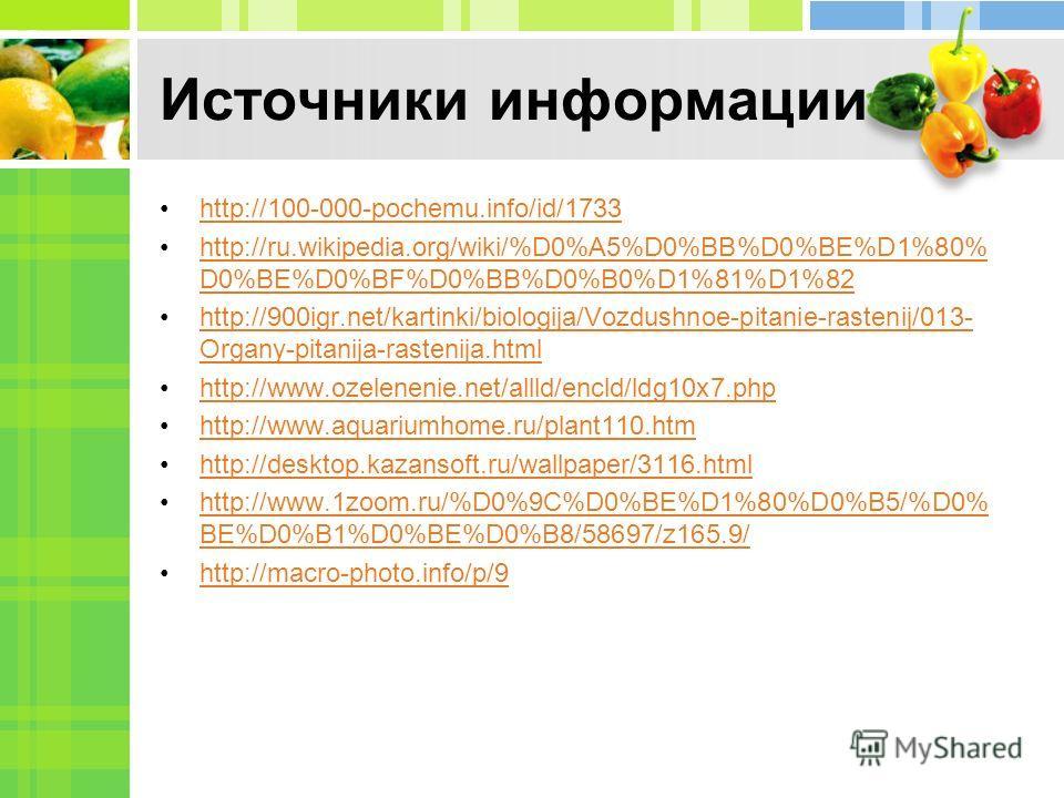 Источники информации http://100-000-pochemu.info/id/1733 http://ru.wikipedia.org/wiki/%D0%A5%D0%BB%D0%BE%D1%80% D0%BE%D0%BF%D0%BB%D0%B0%D1%81%D1%82http://ru.wikipedia.org/wiki/%D0%A5%D0%BB%D0%BE%D1%80% D0%BE%D0%BF%D0%BB%D0%B0%D1%81%D1%82 http://900ig