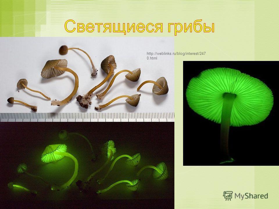 http://weblinks.ru/blog/interest/247 0.html