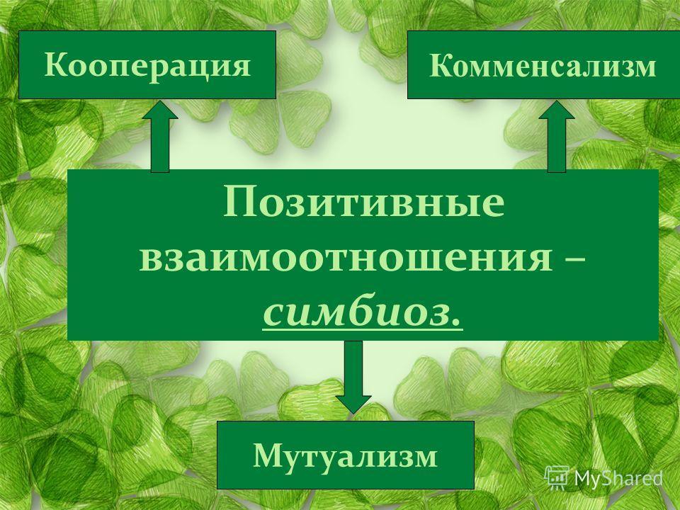 Позитивные взаимоотношения – симбиоз. Кооперация Мутуализм Комменсализм