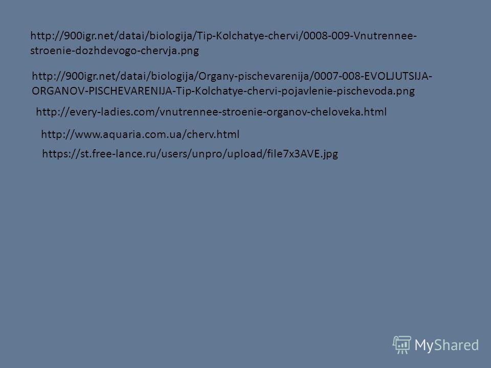 http://900igr.net/datai/biologija/Tip-Kolchatye-chervi/0008-009-Vnutrennee- stroenie-dozhdevogo-chervja.png http://900igr.net/datai/biologija/Organy-pischevarenija/0007-008-EVOLJUTSIJA- ORGANOV-PISCHEVARENIJA-Tip-Kolchatye-chervi-pojavlenie-pischevod