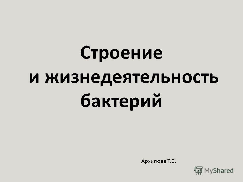 Строение и жизнедеятельность бактерий Архипова Т.С.