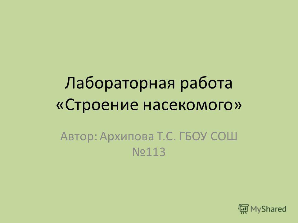 Лабораторная работа «Строение насекомого» Автор: Архипова Т.С. ГБОУ СОШ 113