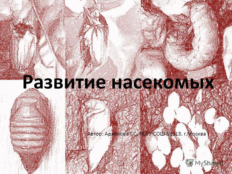 Развитие насекомых Автор: Архипова Т.С. ГБОУ СОШ 113. г.Москва