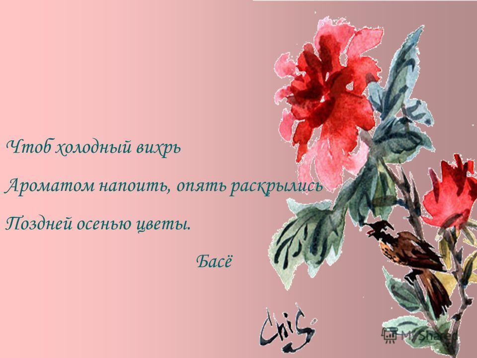 Чтоб холодный вихрь Ароматом напоить, опять раскрылись Поздней осенью цветы. Басё
