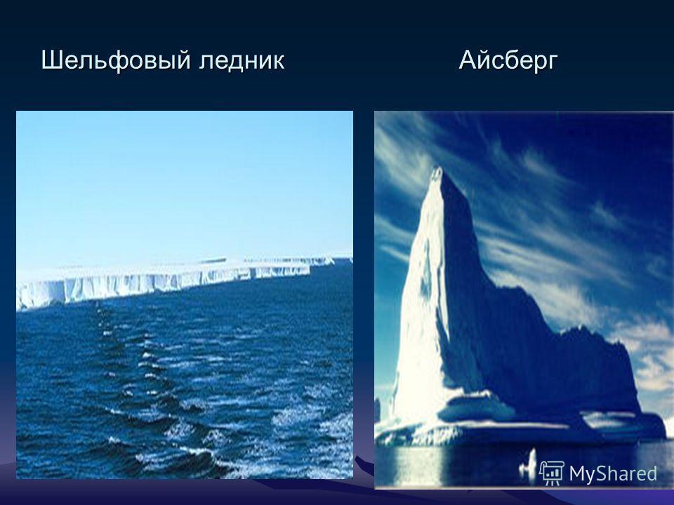 Спускаясь к морю, ледник образует шельфовый ледник, расположенный на материковой отмели шельфе. Отколовшаяся его часть называется айсбергом.