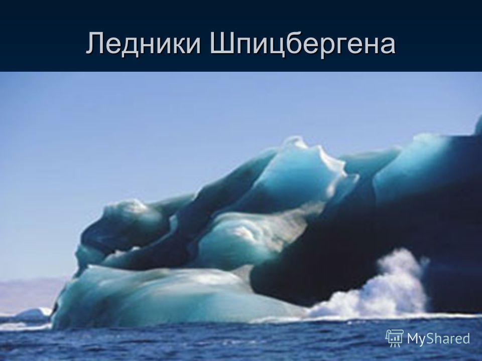 Горно-покровные ледники делятся на: Ледники предгорий Сетчатое оледенение Ледники предгорий образуются в том случае, если климатическая снеговая граница расположена очень низко и велико количество атмосферных осадков. Ледники, образовавшиеся в горах,