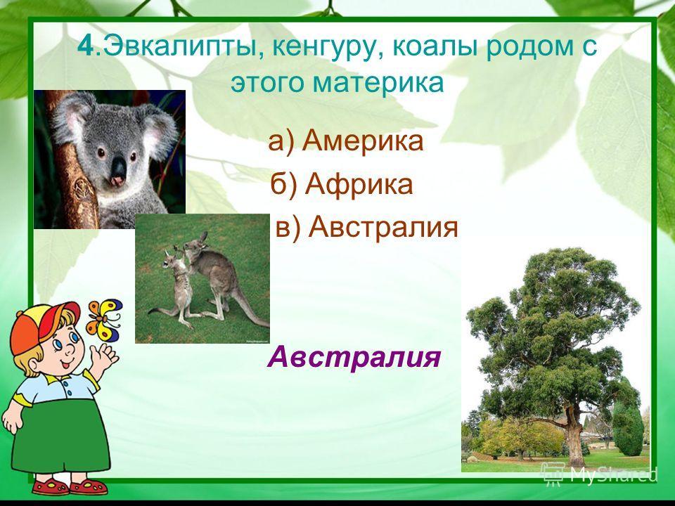 4.Эвкалипты, кенгуру, коалы родом с этого материка а) Америка б) Африка в) Австралия Австралия