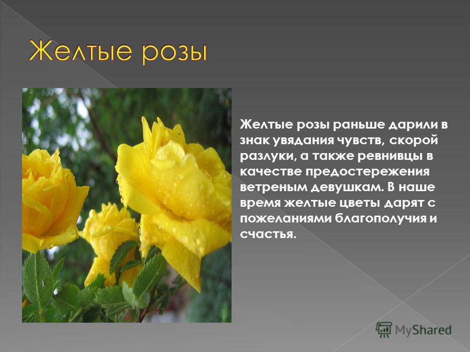 Желтые розы раньше дарили в знак увядания чувств, скорой разлуки, а также ревнивцы в качестве предостережения ветреным девушкам. В наше время желтые цветы дарят с пожеланиями благополучия и счастья.