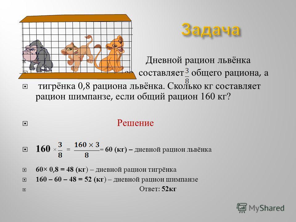 Дневной рацион львёнка со составляет общего рациона, а тигрёнка 0,8 рациона львёнка. Сколько кг составляет рацион шимпанзе, если общий рацион 160 кг ? Решение 160 × = = 60 ( кг ) – дневной рацион львёнка 60× 0,8 = 48 ( кг ) – дневной рацион тигрёнка