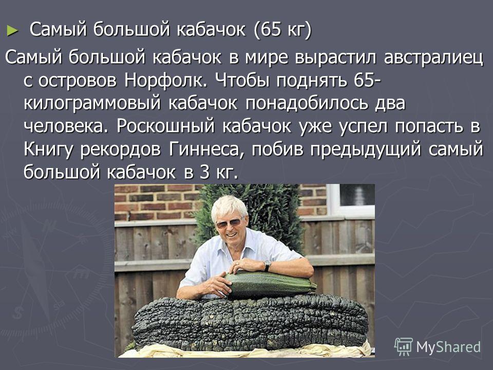 Самый большой кабачок (65 кг) Самый большой кабачок (65 кг) Самый большой кабачок в мире вырастил австралиец с островов Норфолк. Чтобы поднять 65- килограммовый кабачок понадобилось два человека. Роскошный кабачок уже успел попасть в Книгу рекордов Г