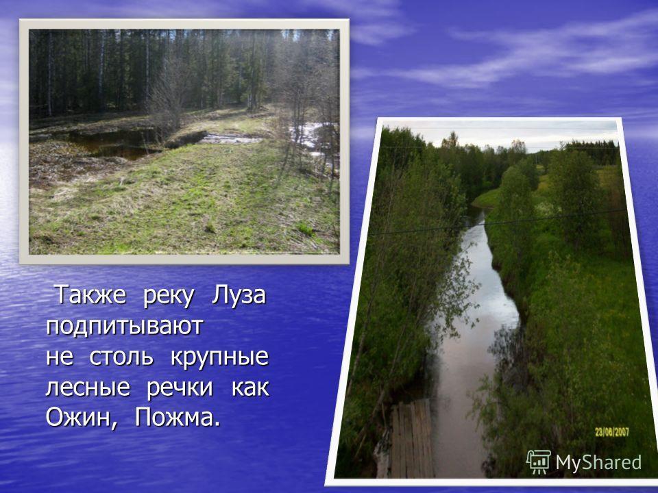 Также реку Луза подпитывают не столь крупные лесные речки как Ожин, Пожма. Также реку Луза подпитывают не столь крупные лесные речки как Ожин, Пожма.