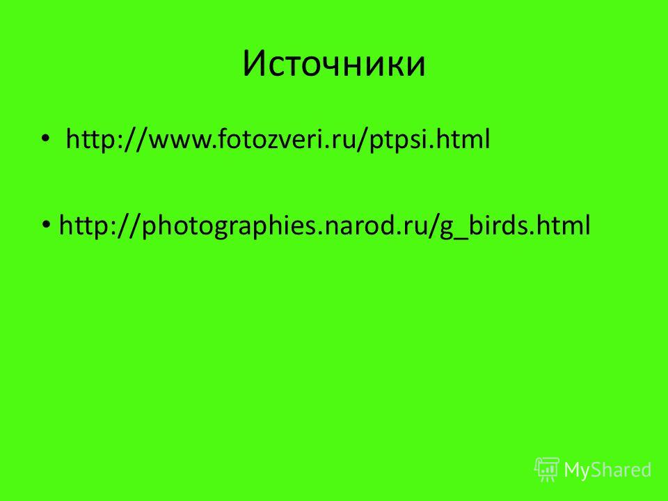 Источники http://www.fotozveri.ru/ptpsi.html http://photographies.narod.ru/g_birds.html