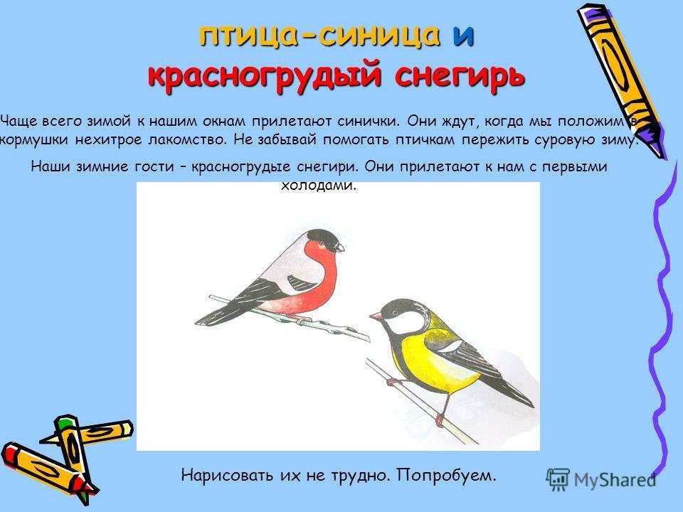 птица-синица и красногрудый снегирь Нарисовать их не трудно. Попробуем. Чаще всего зимой к нашим окнам прилетают синички. Они ждут, когда мы положим в кормушки нехитрое лакомство. Не забывай помогать птичкам пережить суровую зиму. Наши зимние гости –