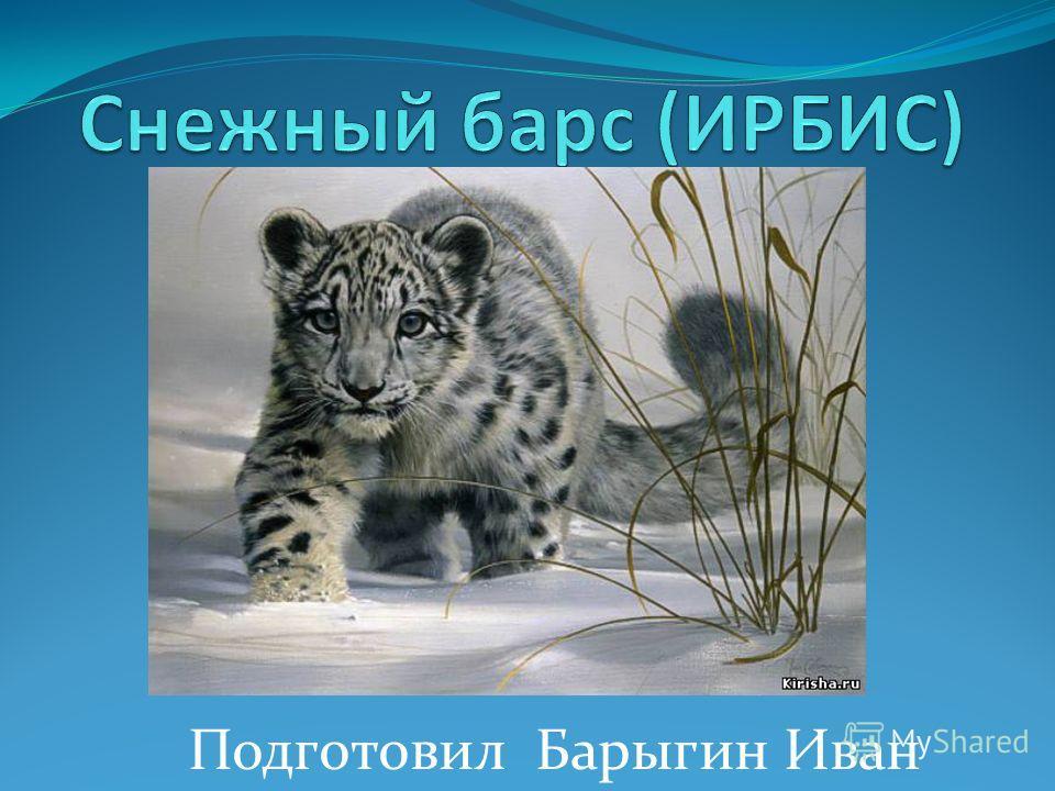 Подготовил Барыгин Иван