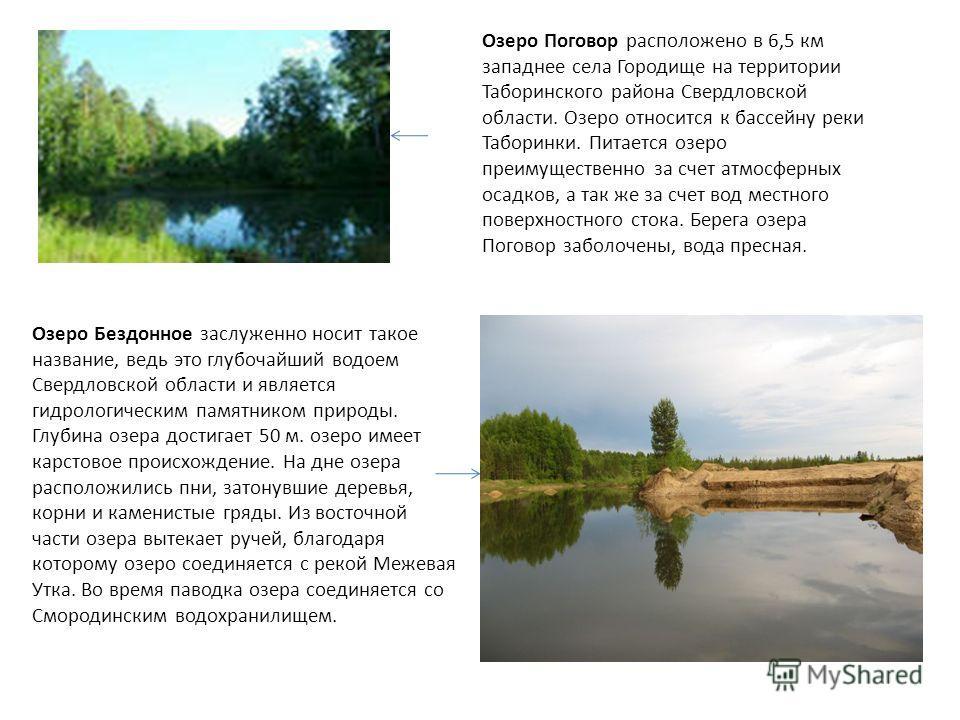 Озеро Поговор расположено в 6,5 км западнее села Городище на территории Таборинского района Свердловской области. Озеро относится к бассейну реки Таборинки. Питается озеро преимущественно за счет атмосферных осадков, а так же за счет вод местного пов