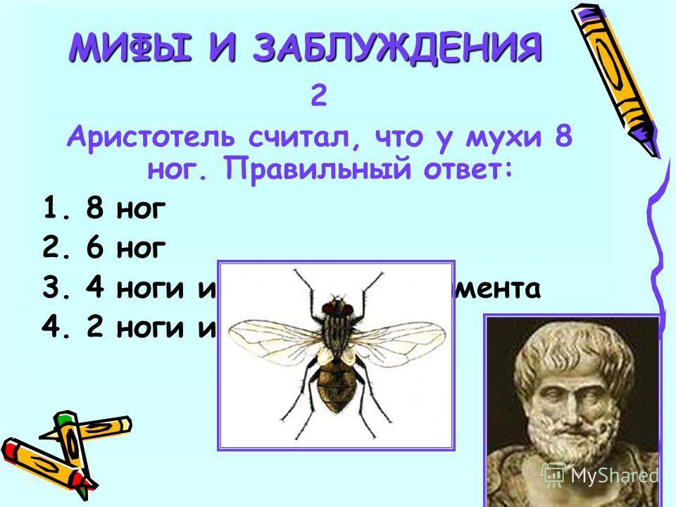 2 Аристотель считал, что у мухи 8 ног. Правильный ответ: 1. 8 ног 2. 6 ног 3. 4 ноги и 2 клешни рудимента 4. 2 ноги и 4 руки
