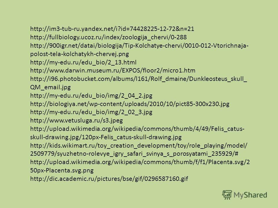 http://im3-tub-ru.yandex.net/i?id=74428225-12-72&n=21 http://fullbiology.ucoz.ru/index/zoologija_chervi/0-288 http://900igr.net/datai/biologija/Tip-Kolchatye-chervi/0010-012-Vtorichnaja- polost-tela-kolchatykh-chervej.png http://my-edu.ru/edu_bio/2_1