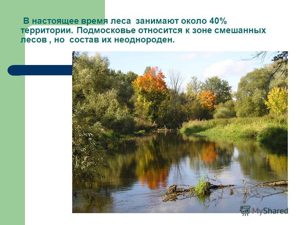 В настоящее время леса занимают около 40% территории. Подмосковье относится к зоне смешанных лесов, но состав их неоднороден.