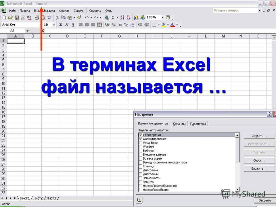 В терминах Excel файл называется …