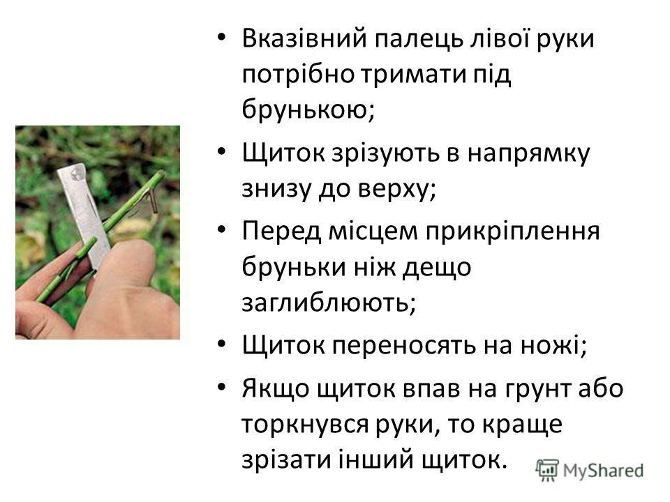 Вказівний палець лівої руки потрібно тримати під брунькою; Щиток зрізують в напрямку знизу до верху; Перед місцем прикріплення бруньки ніж дещо заглиблюють; Щиток переносять на ножі; Якщо щиток впав на грунт або торкнувся руки, то краще зрізати інший