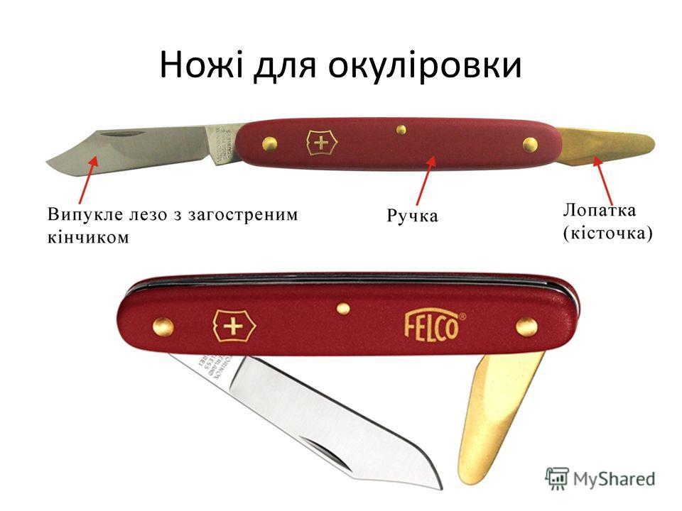 Ножі для окуліровки