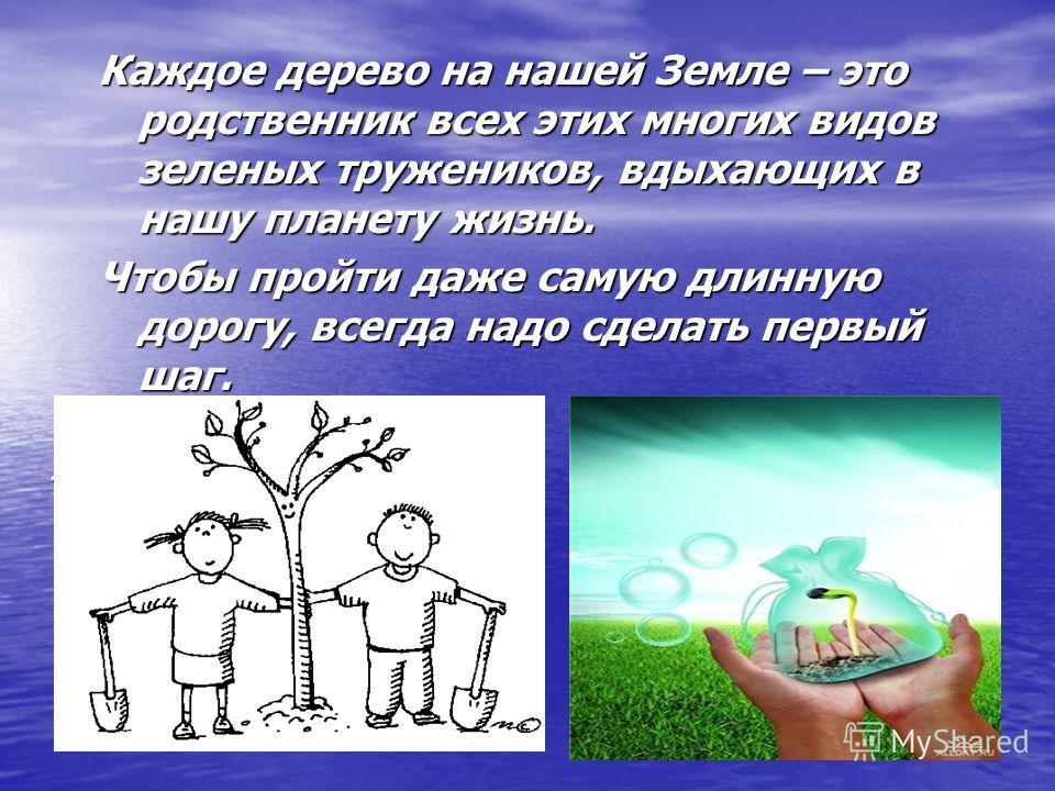 Каждое дерево на нашей Земле – это родственник всех этих многих видов зеленых тружеников, вдыхающих в нашу планету жизнь. Чтобы пройти даже самую длинную дорогу, всегда надо сделать первый шаг. Чтобы пройти даже самую длинную дорогу, всегда надо сдел