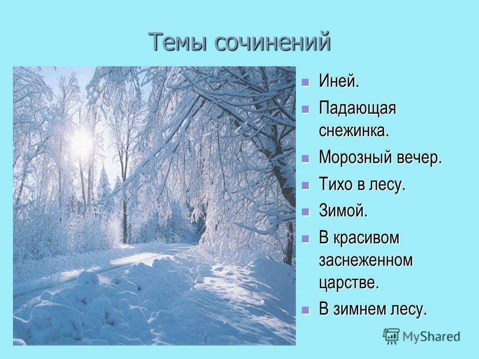 Описание природы из окна своего дома зимой