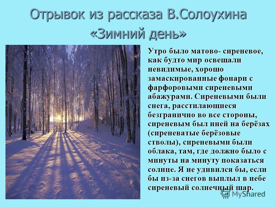 Отрывок из рассказа В.Солоухина «Зимний день» Утро было матово- сиреневое, как будто мир освещали невидимые, хорошо замаскированные фонари с фарфоровыми сиреневыми абажурами. Сиреневыми были снега, расстилающиеся безгранично во все стороны, сиреневым