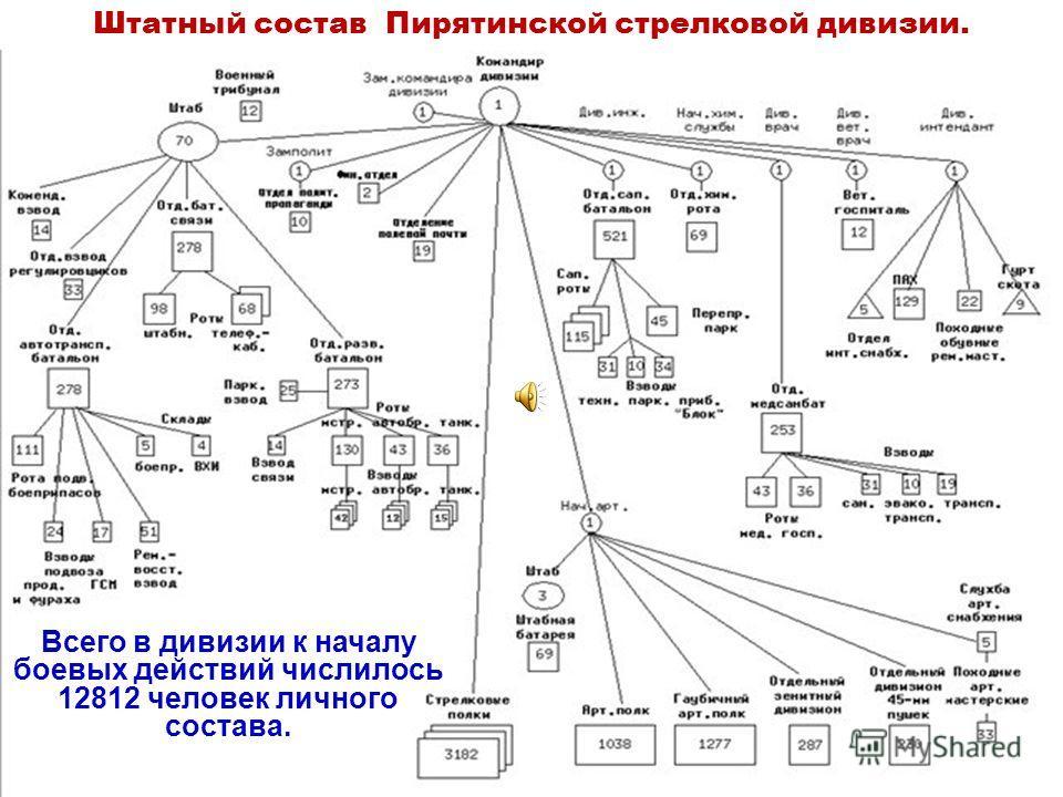 Штатный состав Пирятинской стрелковой дивизии. Всего в дивизии к началу боевых действий числилось 12812 человек личного состава.