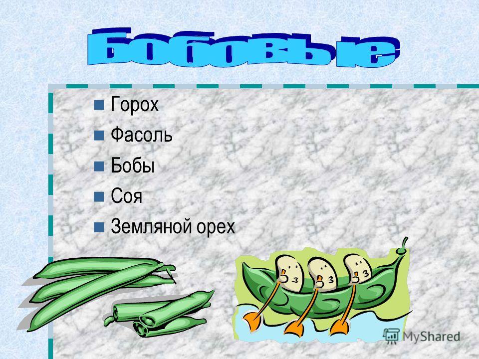 Горох Фасоль Бобы Соя Земляной орех